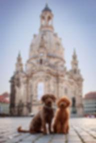 Frauenkirche Hund