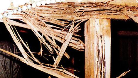 床下土台の被害