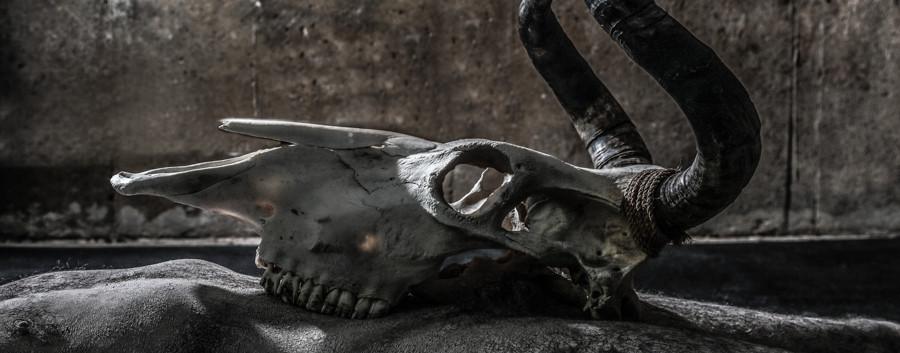 Necromancer-28.jpg