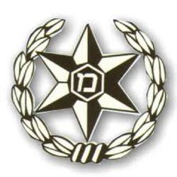 משטרת ישראל