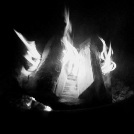 New wood campfire