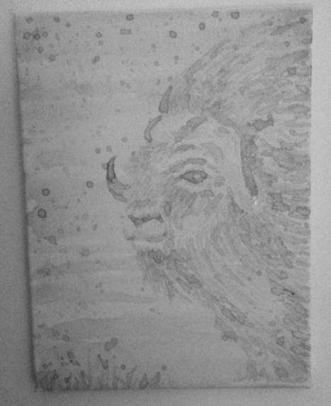 pale musk ox