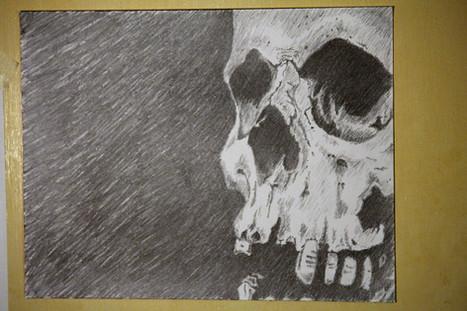 skull, in pencil