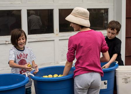 washing_apples.jpg