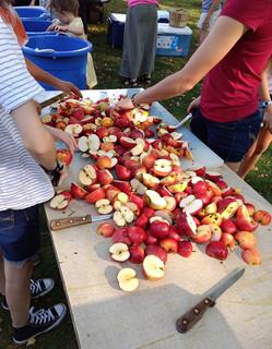 slicing_apples.jpg