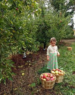 apple_girl.jpg