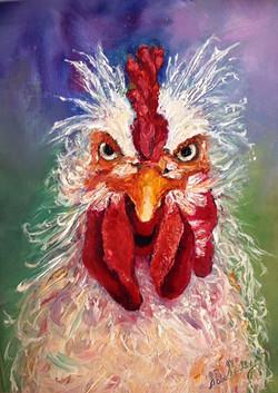 Bob 'Hawkeye' Rooster