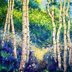 Sunkissed Birches