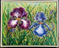 Dancing Irises, framed