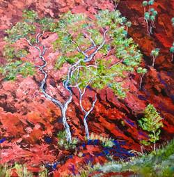 Red Rock Home FRAMED