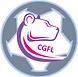 CGFL medal Centre.png