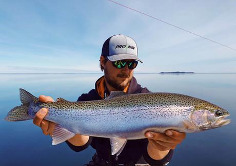 Lake Superior Steelhead