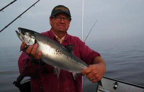 Lake Superior Coho