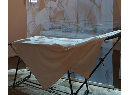 Проекционная сетка в Музее истории медицины