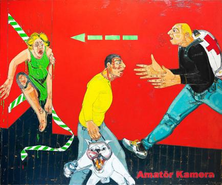 Amateur Camera II, 2010, Oil on canvas, 180 x 216 cm