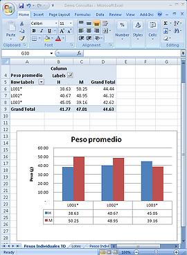 FileMaker Excel App