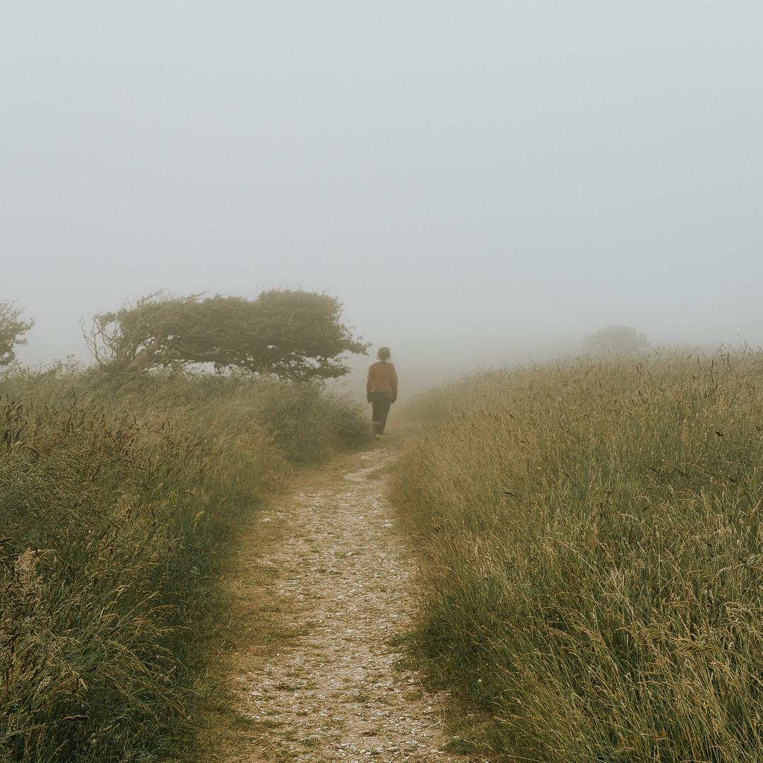 person-walking-on-footpath-beside-grass-