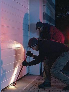 Sécurisez votre TMAX dans votre porte de garage à nice avec Hormann et FMS
