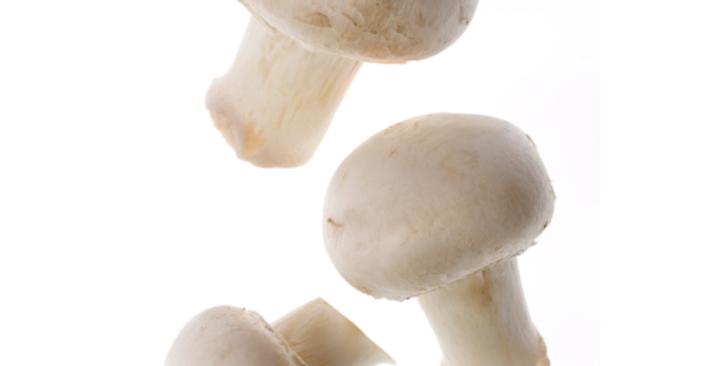 funghi bianchi gr 500