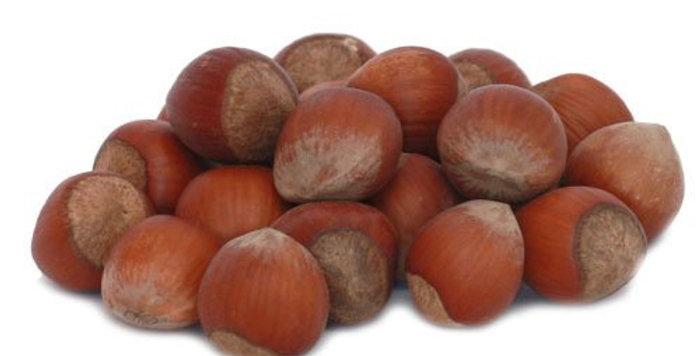 nocciole con guscio kg 1