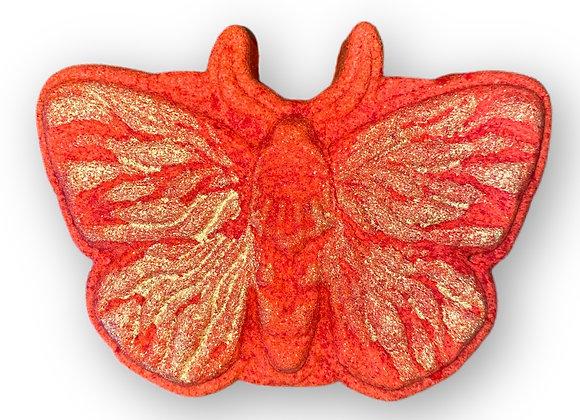 Mahogany Citrus Moth