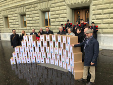 Switzerland - a new referendum concerning gun laws