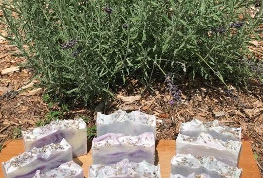 Lavender (3-1/2 oz.)