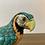 Thumbnail: Perroquet sur socle - N042