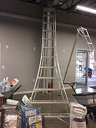 pruning ladders