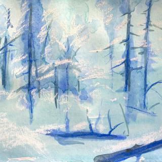 Forest_SC3.jpg