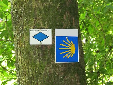 Jakobsweg Wanderroute