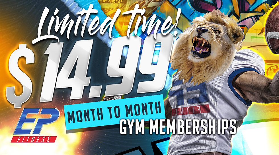 1499-month-to-month-banner-w-lion-copy.j