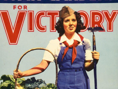 Welcome to the SDSB Victory Garden Blog!