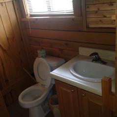 Ozark Bathroom.jpeg