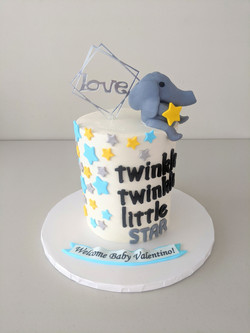 Twinkle Twinkle Little Star Cake