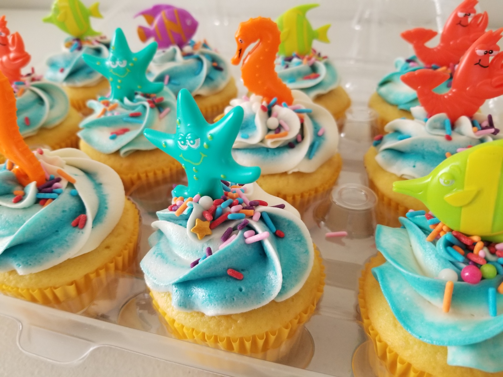 Aquatic Cupcakes