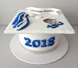 Tennessee State University Grad Cake