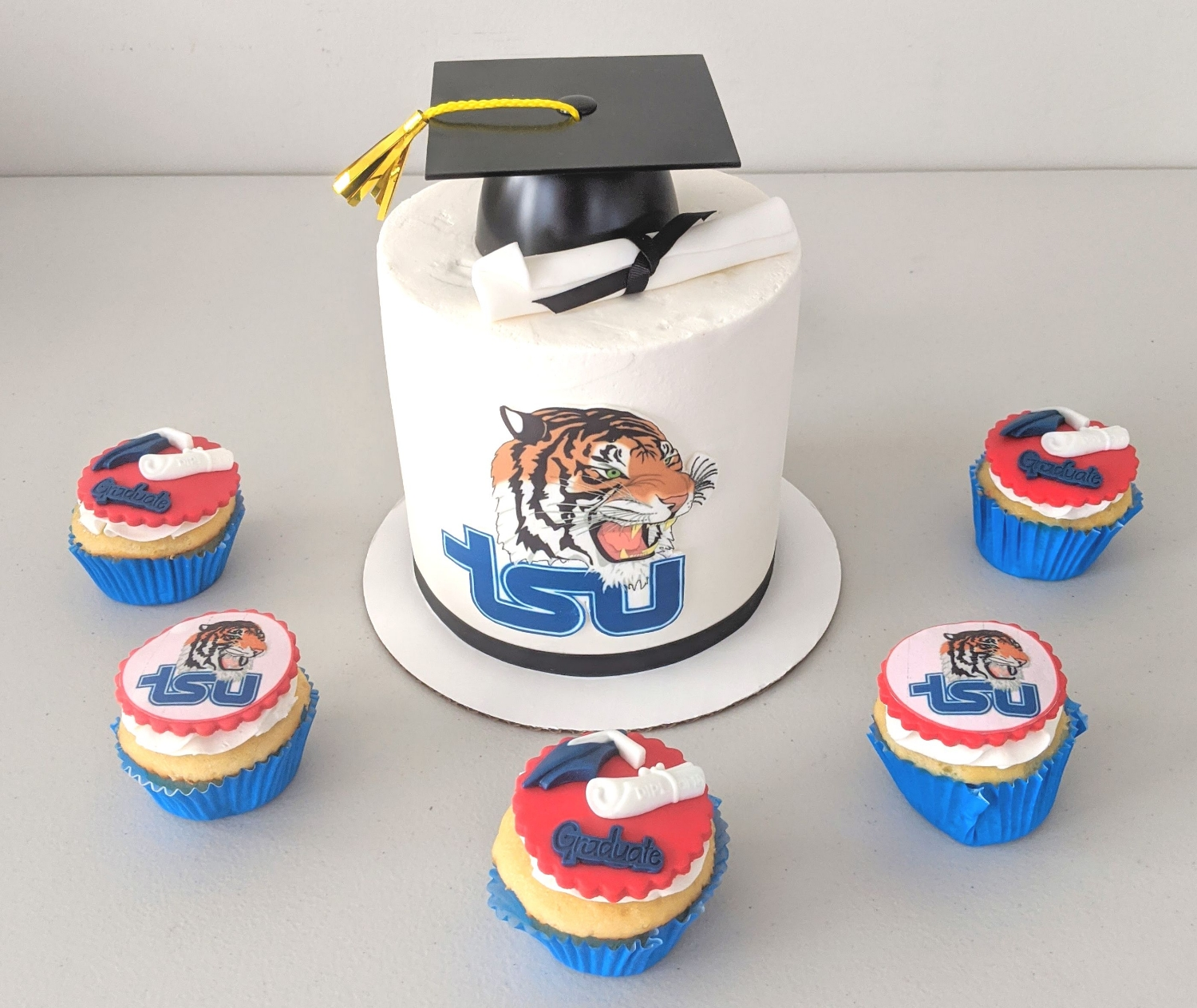 Graduation Cake & Cupcakes