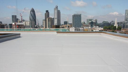 High Level Roof