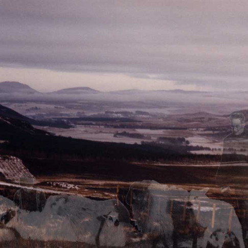Highland Vista