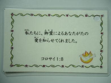 DSC03647.JPG