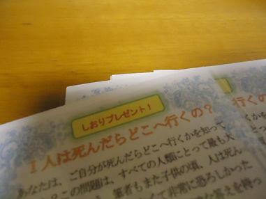 DSC01107.JPG