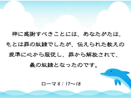今日のみことば 2019/11/07