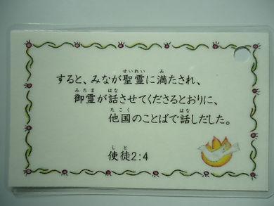 DSC03653.JPG