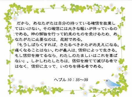 今日のみことば 2019/11/19
