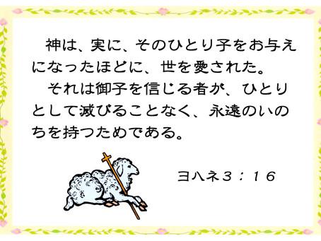 今日のみことば 2019/11/04