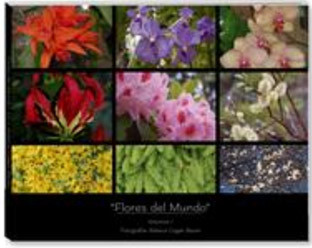 Dessert Flowers Cover