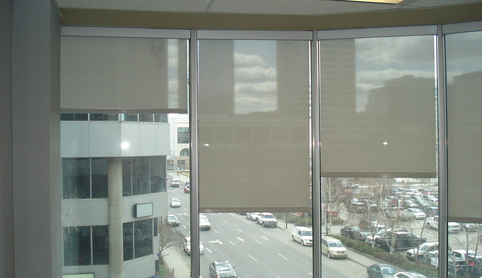 Beautiful Blinds Perforated Solar