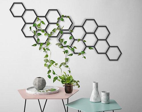 משושים ממתכת יכולים לשמש גם כקיר טיפוס לצמחים | WALL ART | עיצוב הבית