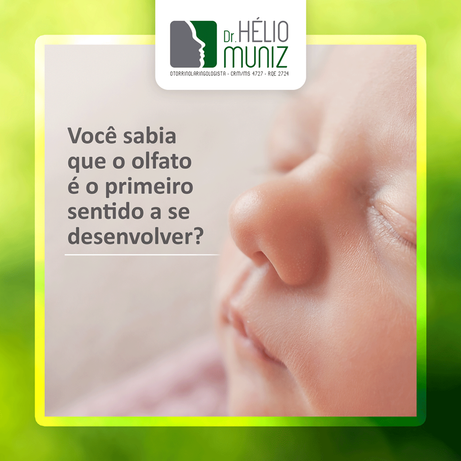 Você sabia que o olfato é o primeiro sentido a se desenvolver?